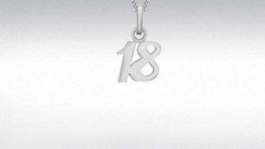 Silver sml 18th Pendant/Chain