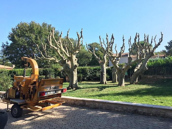 entretien espaces verts | élagage Var bouches-du-rhone