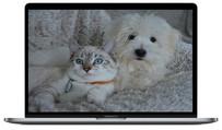 Création de site web pour éleveur chiens / chats