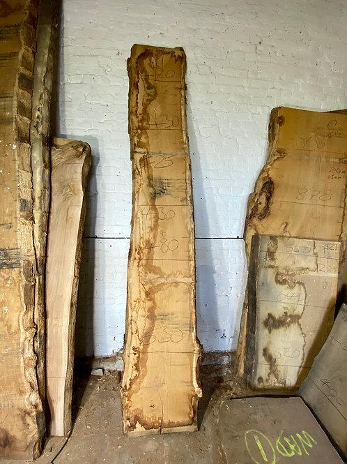 Kiln dried Oak Slab #25