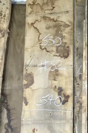 waney edge oak slab. No # 52. Kiln dried Oak slab for sale