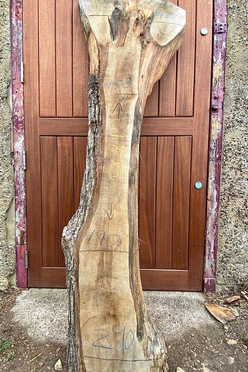 Waney Edge Oak Slabs #12