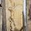 waney edge oak slab. No # 12. Kiln dried Oak slab for sale