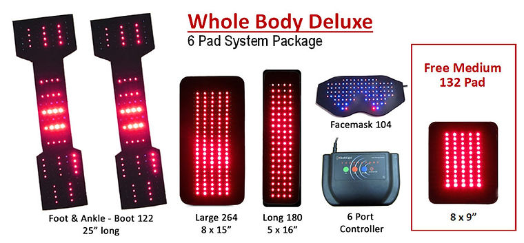 Whole-Body-Deluxe-6-Port-6-Pad-LED-Thera