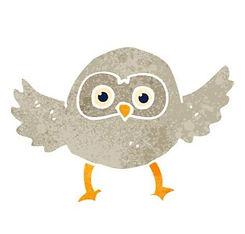 OWLS_edited.jpg