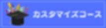 カスタマイズコース(英会話個別指導).png