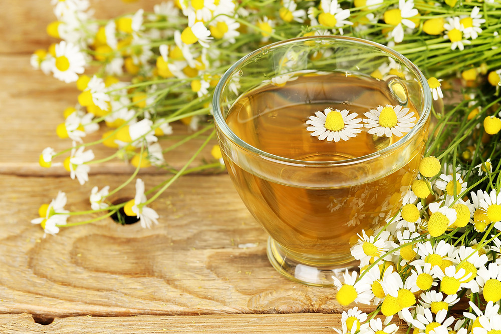 Cup of chamomile tea with chamomile flowers on a rustic wooden background.