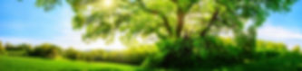 ThinkstockPhotos-598058914.jpg
