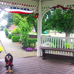 Happy Memorial Day from Stars Hollow