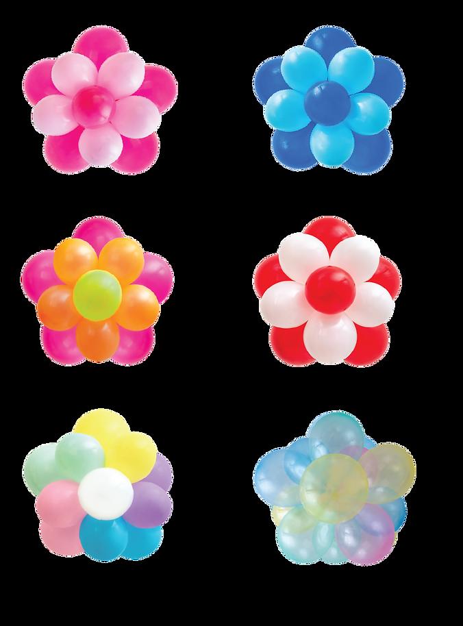 bloom1.png