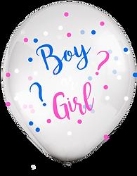BOY OR GIRL FRENTE.png