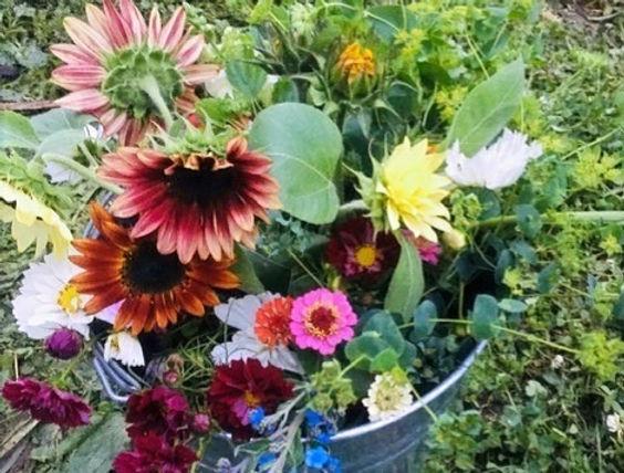 flower bucket July 12_edited.jpg