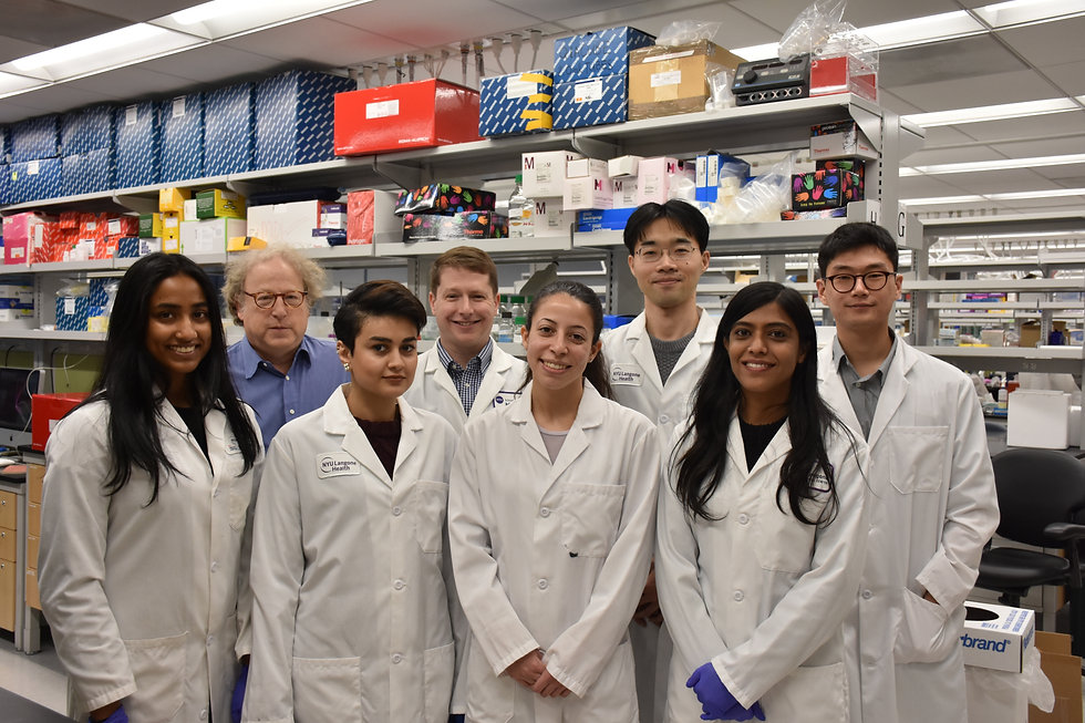 Landau Lab Team