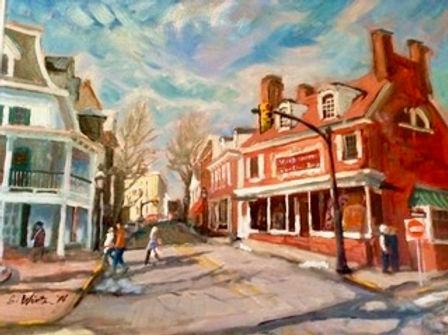 Doylestown Winter (1).jpeg
