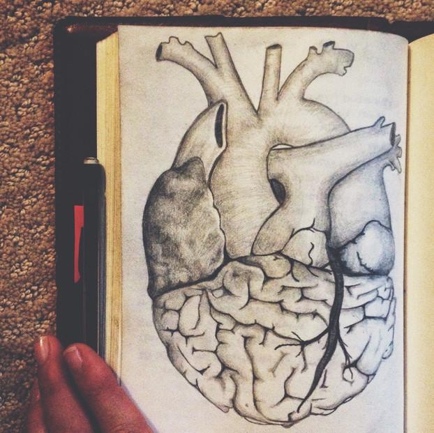 head vs heart. graphite on paper. 5 1/2 x 8.
