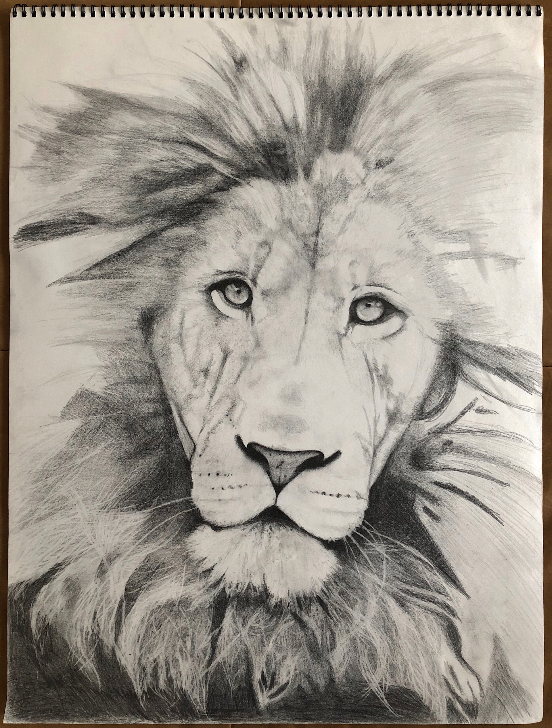 """king."" graphite on paper. 18x24. (work in progress)"