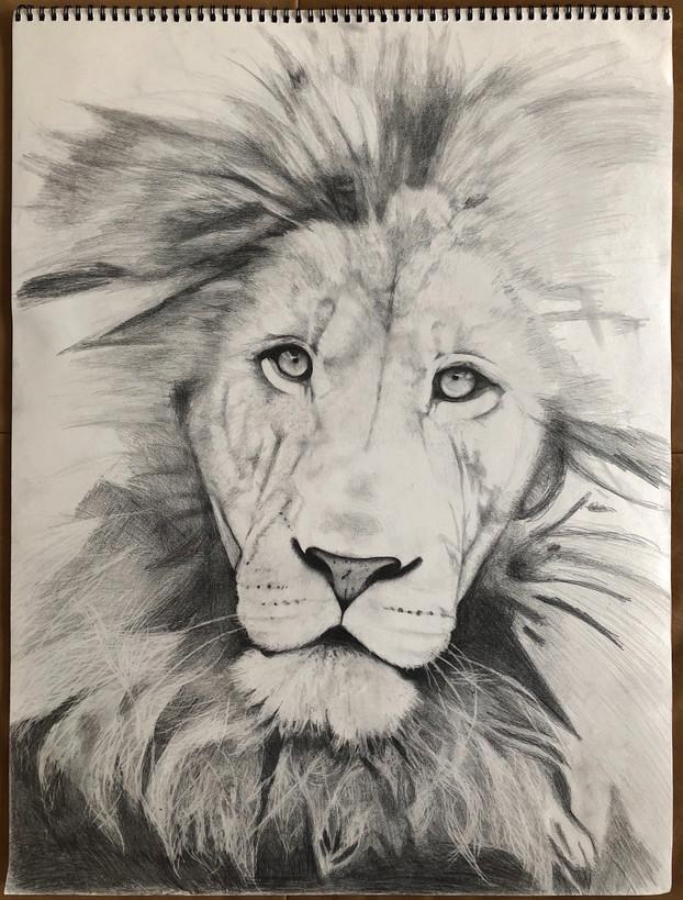 """king."" graphite on paper. 18x24. (work in progress)"