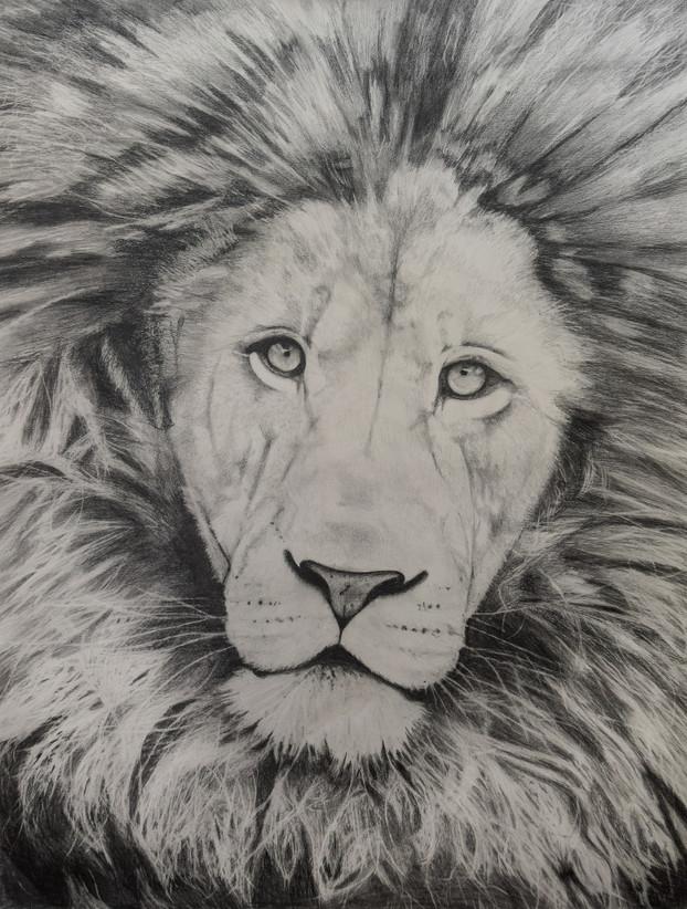 LION PRINT FINAL.JPG