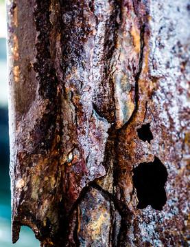 Metallic Bruising