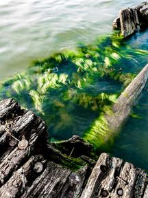 Baltic Shipwreck