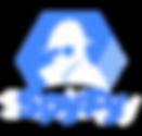 Spyfy-Logoaa-300x2871-1.png
