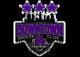 Downtown LA SC_edited.png