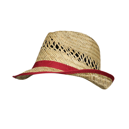 YD42 | Fedora Hat