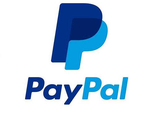 Paypal corporativo a nome società USA ( LLC e CORP)