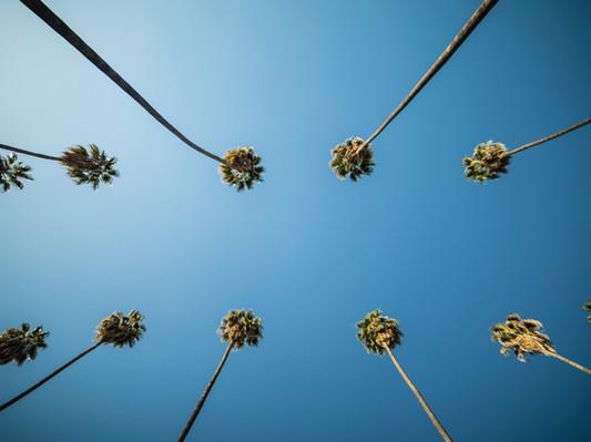 Лос-Анджелес США.jpg