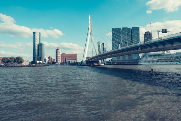 Мост Эразма Роттердам.jpg