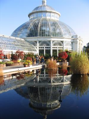 Нью-Йоркский Ботанический Сад Бронкс.jpg