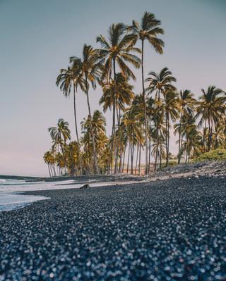 Черный пляжи в Гавайи.jpg