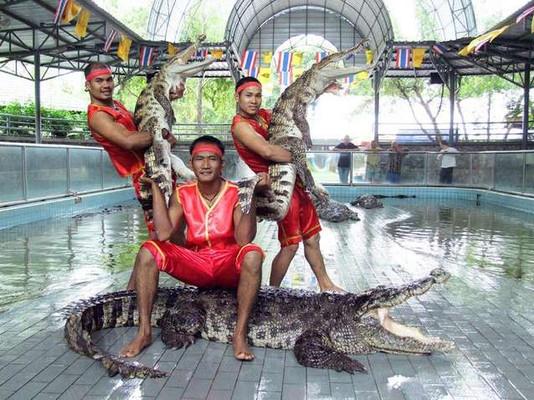 Крокодиловая ферма Паттайя.jpg