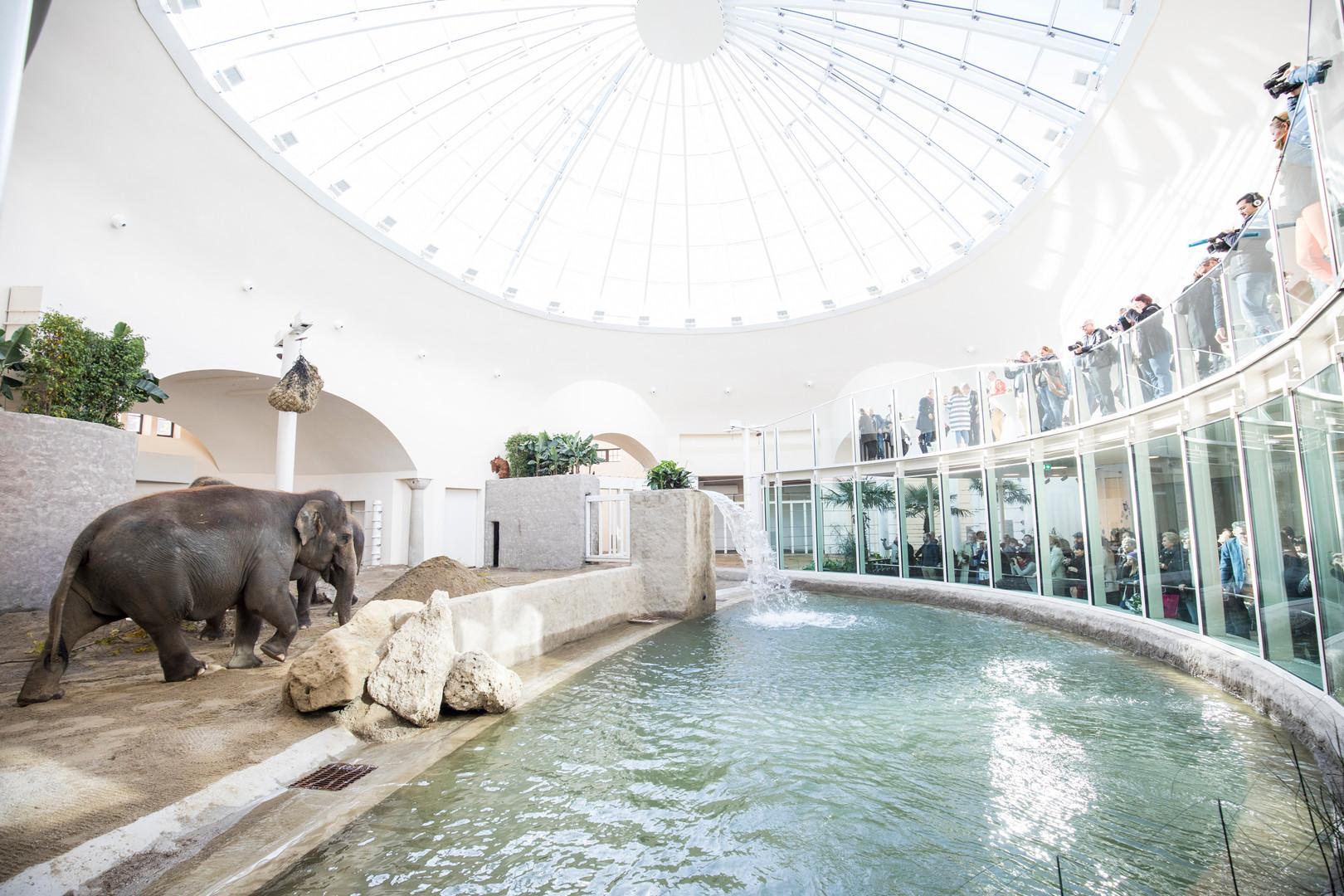 Мюнхенский зоопарк.jfif