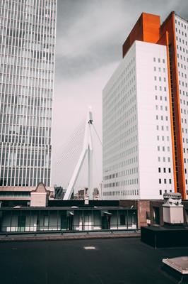 Роттердам архитектура.jpg