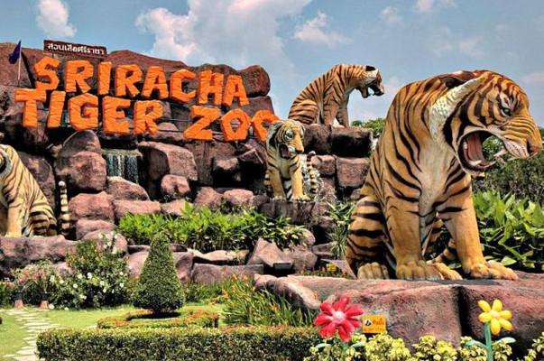 Тигровый зоопарк Сирача Паттайя.jpg