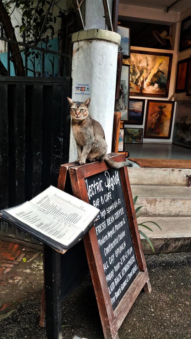 Кафе и рестараны Катманду.jpg