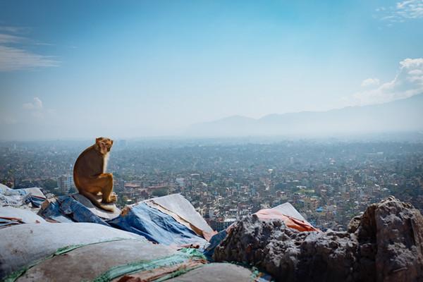 Катманду.jpg