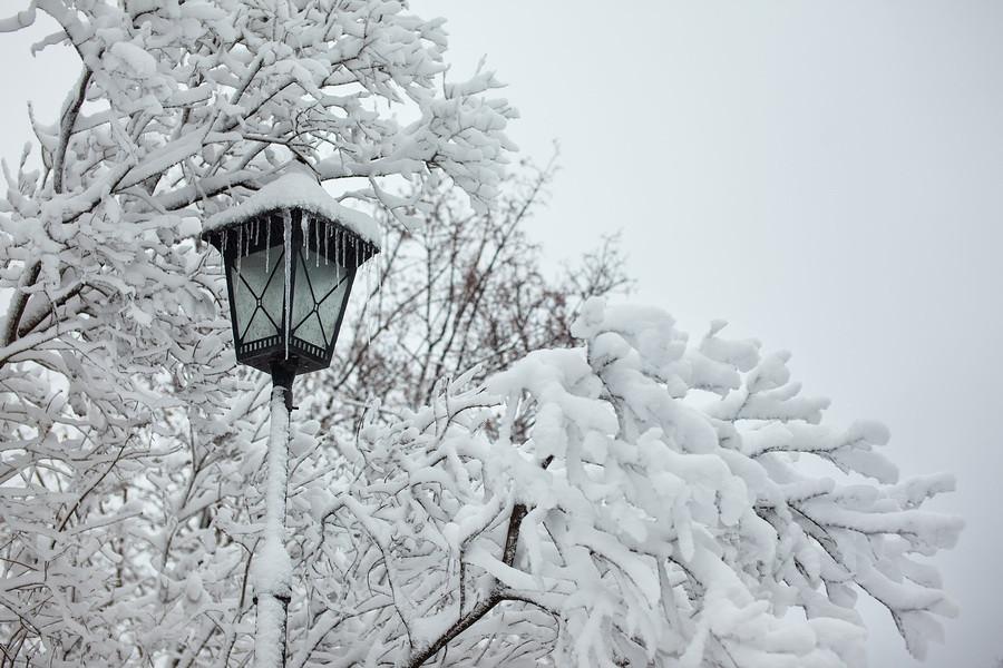 Фото замерзший фонарь