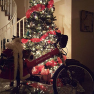 Dear Santa, We've been so good this year! We want Red EBike for Christmas 😇🚴❤️_Gift an unforgettable experience- buy a gift voucher at RedEB