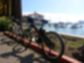 Catalina Electric Bike Tours