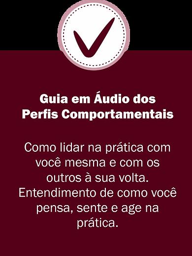 31-guia-de-audios.png