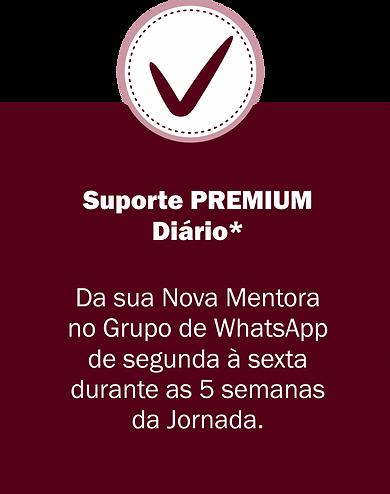 35-suporte-premium.png