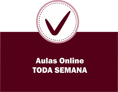 27-aula-online.png