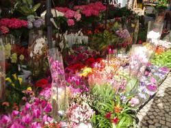 Markets Cadiz, Spain