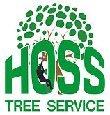 Professional Tree service near me , rock