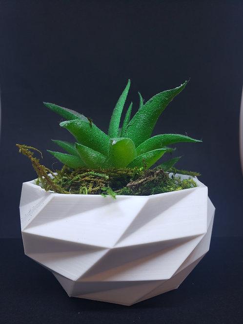 Plant pot Poly style