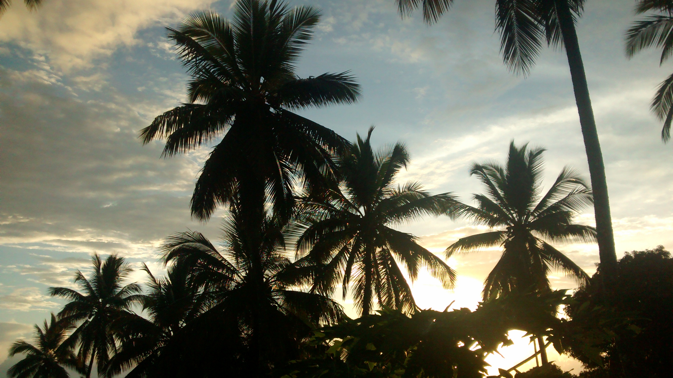 Dzinguizoni - Comores