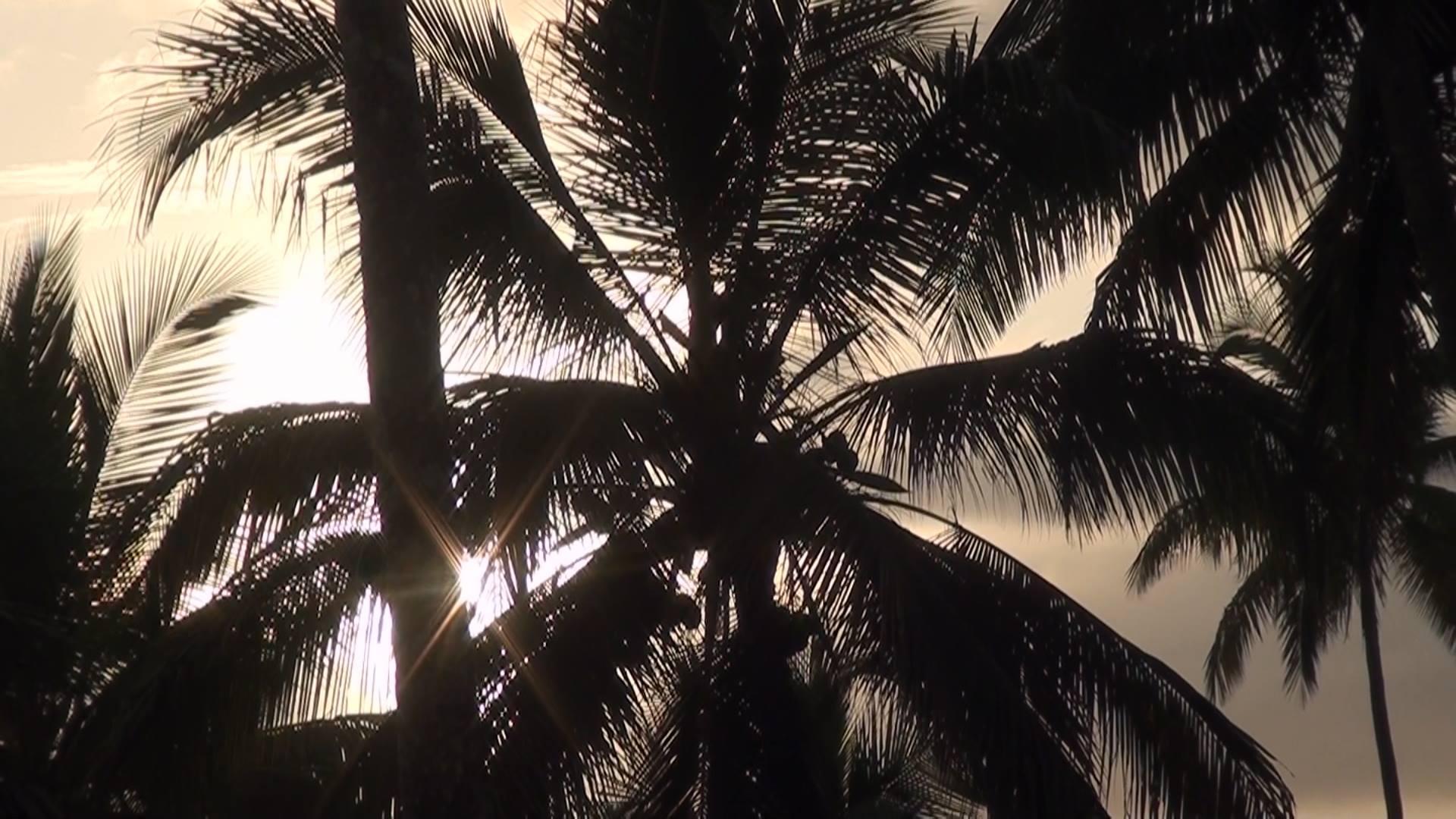 Dzinguizoni couché de soleil