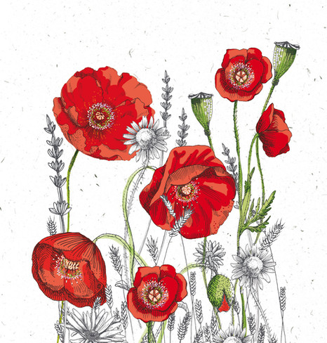 Durance, Gamme Coquelicot.